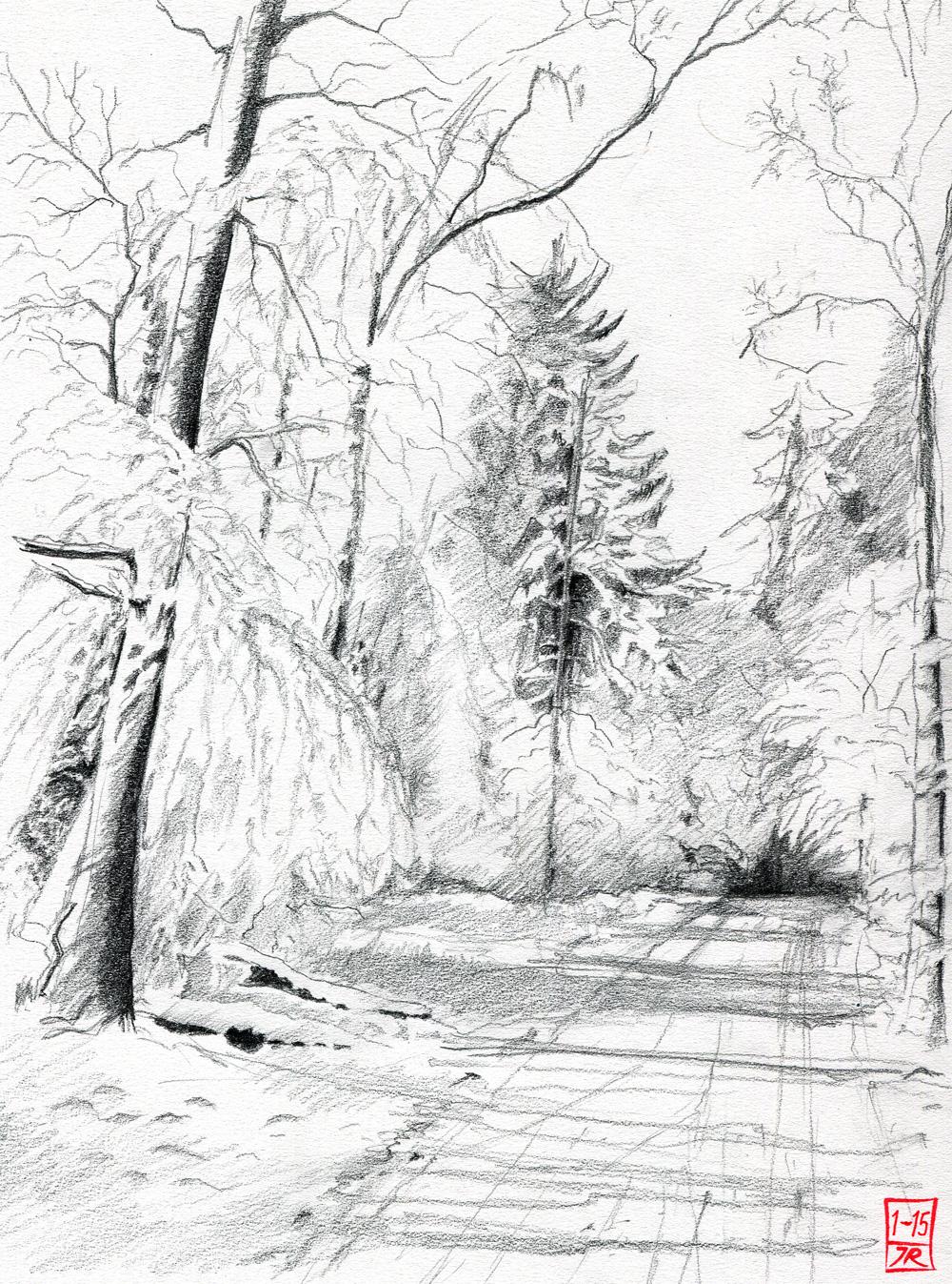 Zeichnen lernen mit