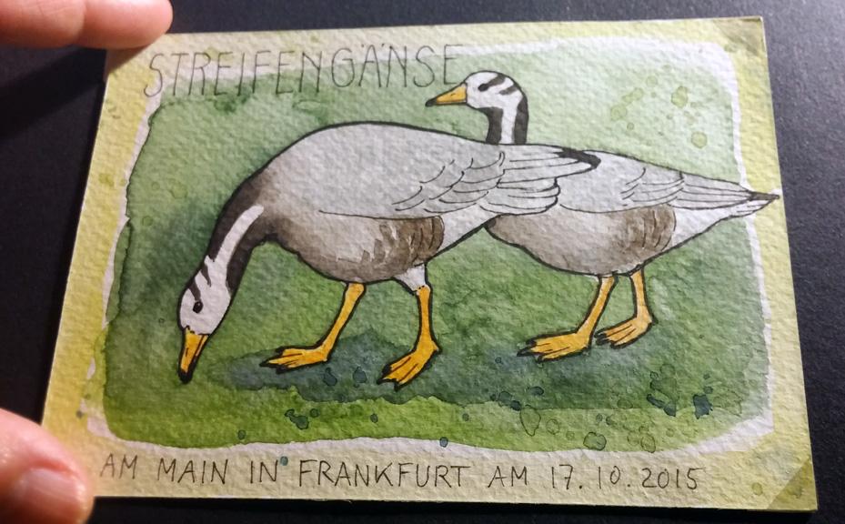 Postkarte von Katrin Merle